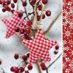 Winter Rowan
